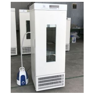 150L不銹鋼內膽恒溫箱LRH-150-S恒溫恒濕培養箱