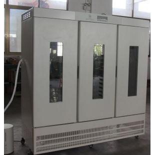 植物老化试验箱LRH-1200A-HS精密型恒温恒湿箱