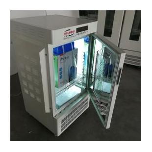 环境气候培养箱HYM-250-Y药物稳定性试验箱