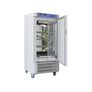 150升种子培养箱SPX-150BSH-II生化培养箱