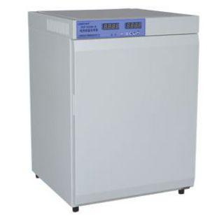 恒溫試驗箱DNP-9082BS-III電熱恒溫培養箱