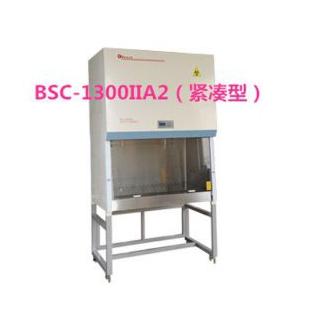 BSC-1300IIA2生物安全柜1100×500×640生物安全柜