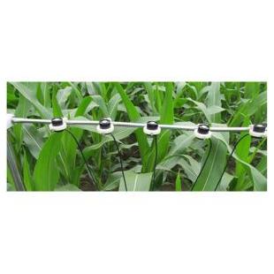 TPF-8N光合有效辐射记录仪 农作物生长光合记录仪