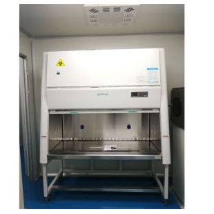 BSC-1004IIA2生物安全柜 微生物学实验安全柜