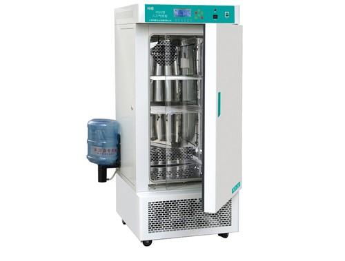 人工气候箱RGX-250   上海科恒人工气候箱