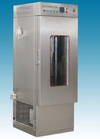 YW250药物稳定性温热箱  实验厂数显试验箱