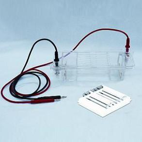 琼脂糖水平电泳仪DYCP-32B   北京六一电泳仪