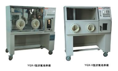 厌氧培养箱YQX-II