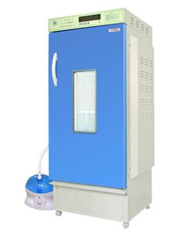 LRH-250-YG药物稳定性试验箱