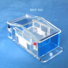 DYCP-31A微瓊脂糖電泳儀