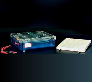 DYCP-37B等电聚焦电泳仪