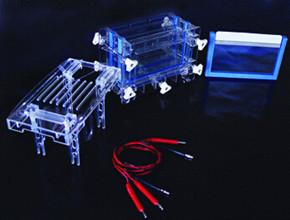 DYCZ-30C双板夹心式垂直电泳仪