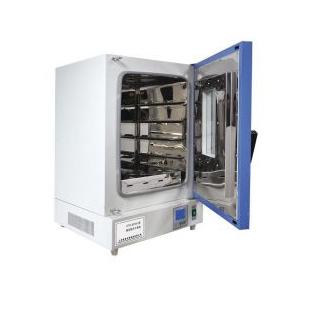 滬粵明立式鼓風干燥箱DHG-9076A
