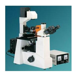 上海熒光顯微鏡XSP-12C4型
