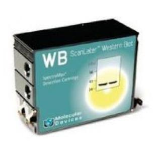 美谷分子Western Blot 检测系统ScanLater