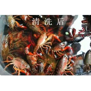 小龙虾清洗无锡雷士超声波设备