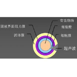 雷士LSA-CE600双频超声波萃取振板