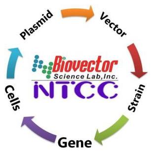 NTCC典型培养物保藏中心-BioVector质粒载体菌种细胞基因保藏中心