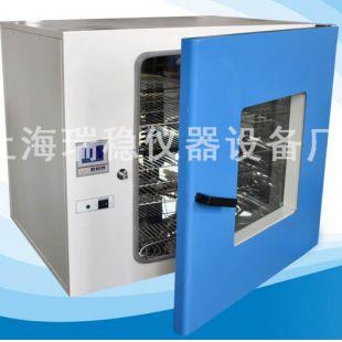 上海瑞稳台式300度电热恒温鼓风干燥箱DHG-9125A