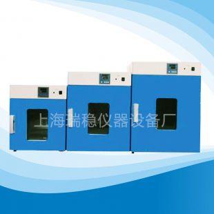 上海瑞稳立式250度电热恒温鼓风干燥箱