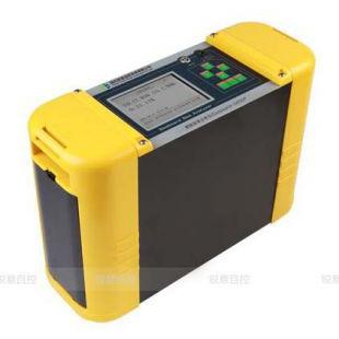 锐意自控便携综合燃气分析仪 Gasboard-3000P