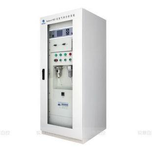 湖北锐意在线气体分析系统 Gasboard-9031