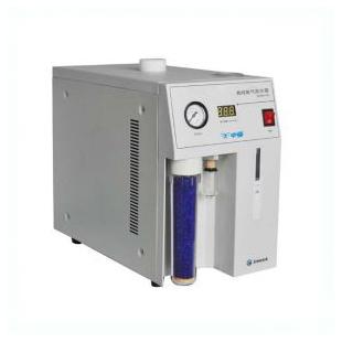 中亚 SPGN-2A 氮气发生器