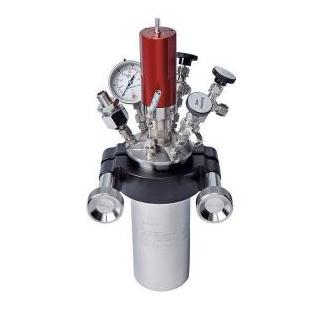 Chemtron BR-300/500/700机械搅拌反应釜
