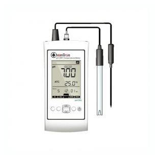 ChemTron CAS9010 标准型便携式pH 计