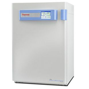 Thermo Scientific™ Forma™ 3 系列水套式 CO2 培养箱