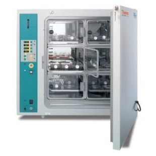Thermo Scientific™ BBD 6220 CO2培养箱