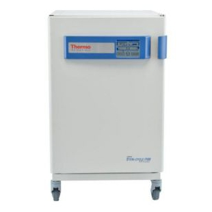Thermo Scientific™ Forma™ Steri-Cycle™ i160 CO2培养箱