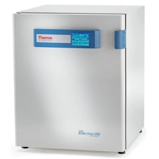 Thermo Scientific™Forma™ Steri-Cycle™ i250 CO2 培养箱