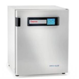 Thermo Scientific™Heracell™ VIOS 250i CO2 培养箱