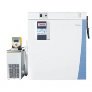 Thermo Scientific™ Heracell™ VIOS 160i CO2 不锈钢舱室培养