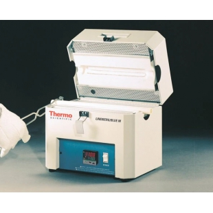 Thermo Scientific™ Lindberg/Blue M™ Mini-Mite™ 管式炉