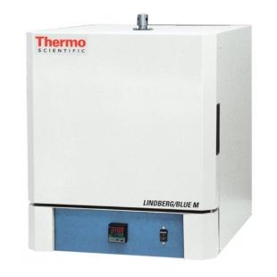 Thermo Scientific™ Lindberg/Blue M™ Moldatherm™ 箱式