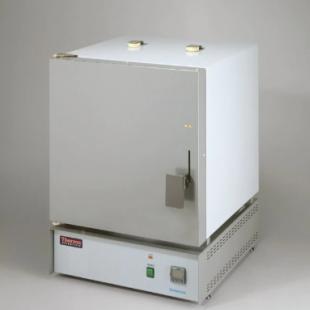 Thermo Scientific™ Thermolyne™