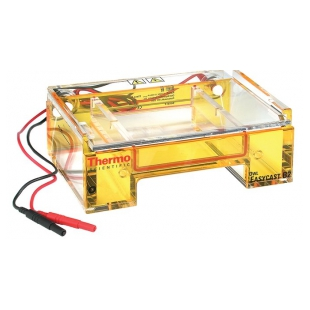 Thermo Scientific™ Owl™ EasyCast™ B2 微型凝胶电泳系统