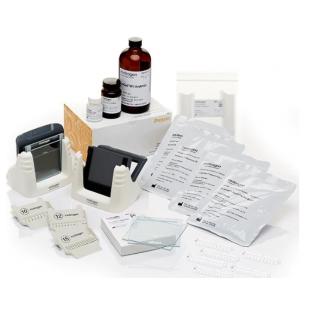 Invitrogen™ SureCast™ 手灌胶套装 A - 硬件和试剂