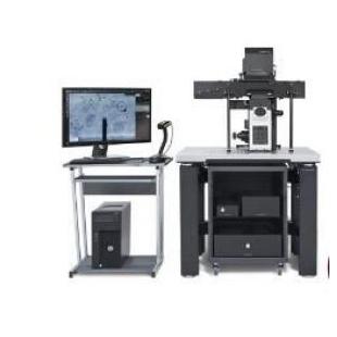 瑞士 Cytosurge FluidFM BOT 多功能单细胞显微操作系统