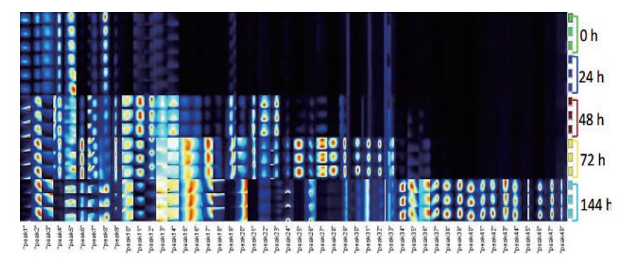 图6.不同存储时间的鸡蛋挥发性有机物指纹图谱.png