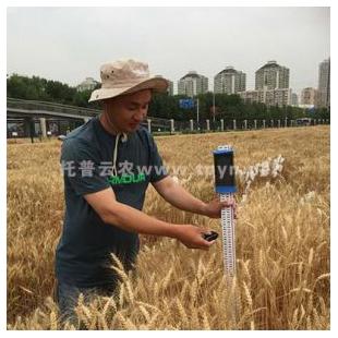 作物株高测量仪