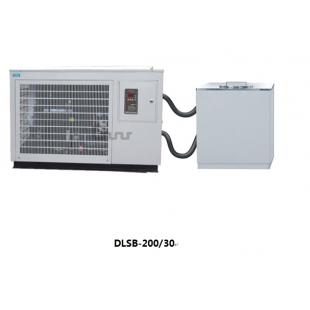 DLSB-200/30低温冷却液循环泵