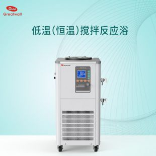 低温恒温搅拌反应浴DHJF-4020低温恒温浴