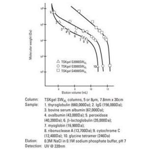 东曹  蛋白质分离分析用色谱柱TSKgel SWXL