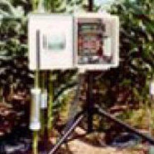 包裹式植物莖流(液流)計