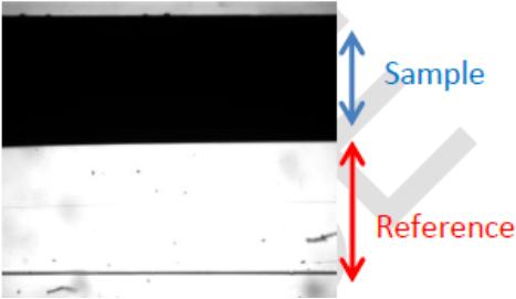 图3 涂料流动时的界面位置照片.png