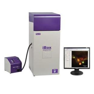 UVP显微活体成像系统 iBox Explorer