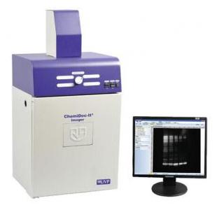 UVP自動凝膠成像系統 GelDoc-It2 315